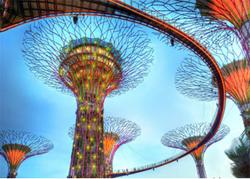 singapo10