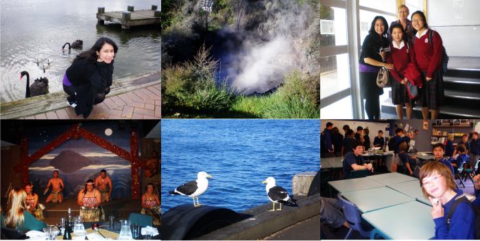 Auckland&Rotorua3
